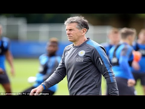 'We have to endure this short-term pain for long-term gain': Leicester boss Claude Puel calls