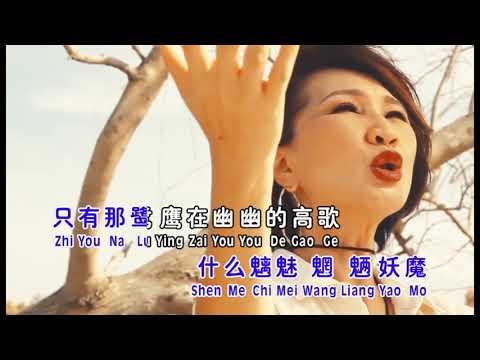 沙漠骆驼(MV)陈丽媚
