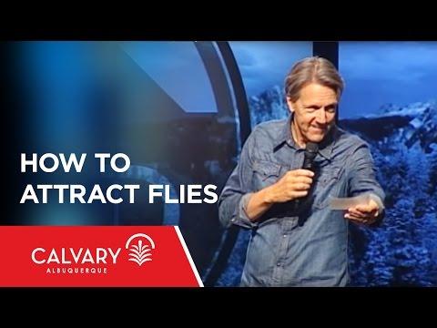 How To Attract Flies - 1 Peter 3:8-12 - Skip Heitzig