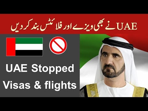 UAE Stopped Flights and All Visas - UAE New Immigration Update.