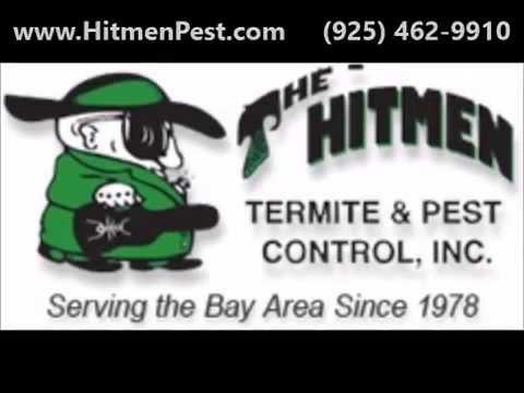 Pleasanton Bed Bug Removal | Bed Bug Treatment & Inspection in Pleasanton