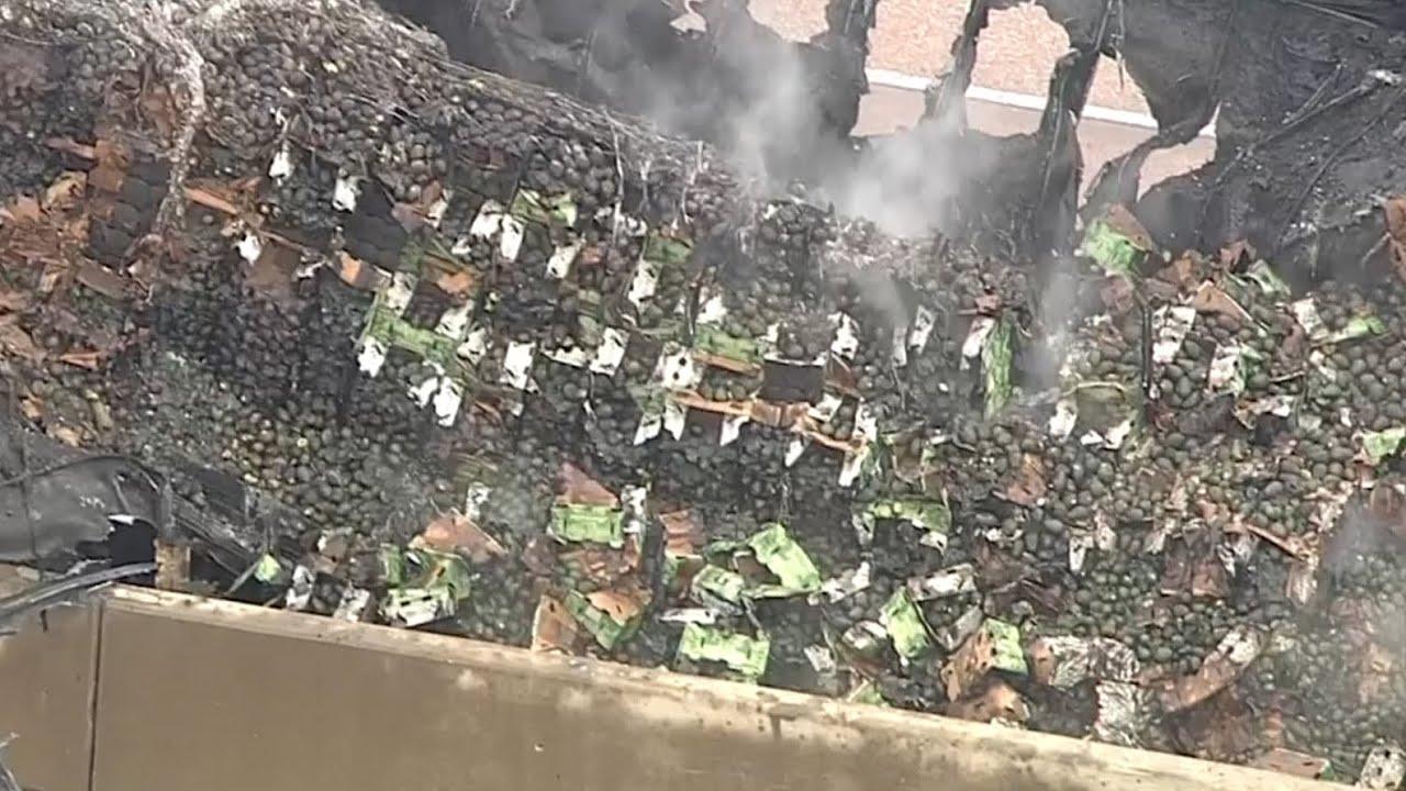 18 tonnes of avocados burn after Texas truck crash – video