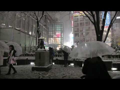 Tokyo Snow Storm Footage Feb 14th 東京雪嵐映像2月14日2014