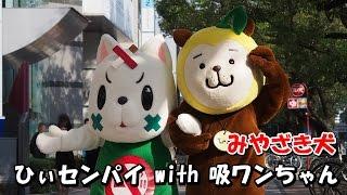 【みやざき犬】ひぃセンパイ with 吸ワンちゃん