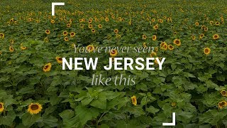Sunflower Maze: You've Never Seen New Jersey Like This