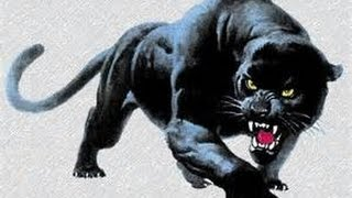 Dream of Attack of the ISIS Black Panther and Demonic Hordes