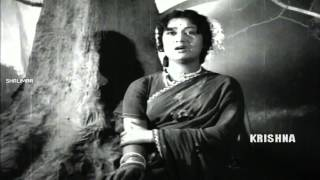 Cheliyaledu  Video Song || ANR Devadasu Movie ||  Akkineni Nageswara Rao, Savitri