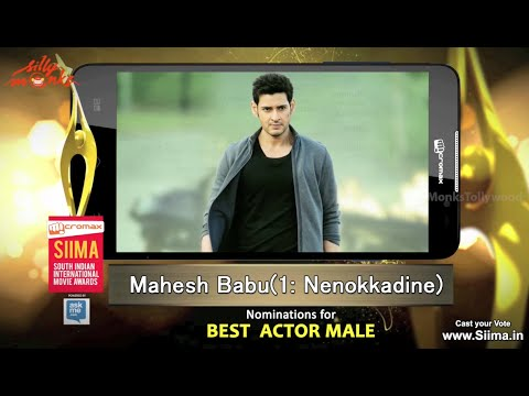 SIIMA Awards 2015 - Nominations For Best Actor - Telugu