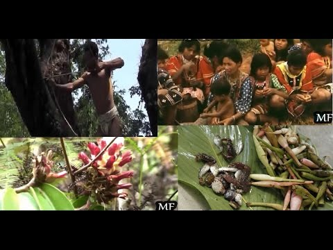 Indigenous Tribes of the Philippines
