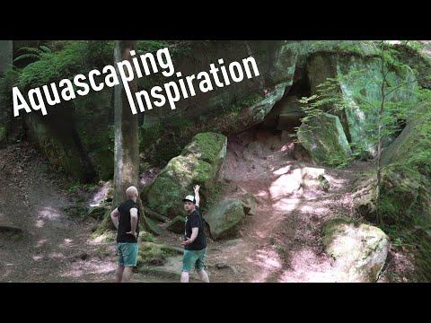 AQUASCAPING Inspirationen aus der Natur! | DENNERLE