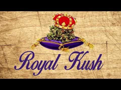 Royal Kush Band - Stand Up