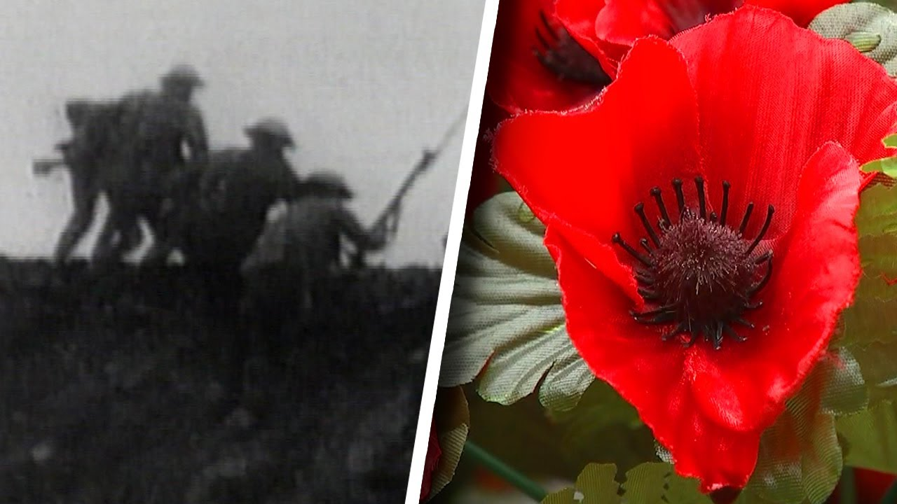 What Is Remembrance Day And Why Is The Poppy Its Symbol Youtube