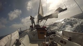 Singlehanded Sailing--LA to Hawaii and Return, 2014