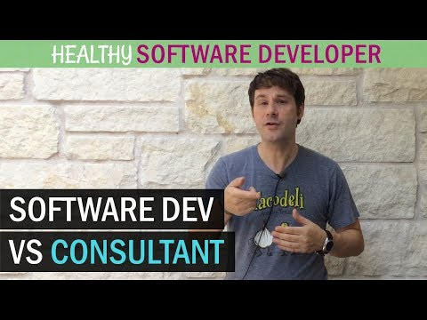 Software Developer Vs Consultant - What's Better For YOU?