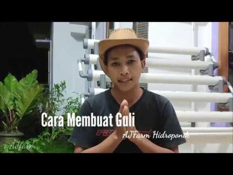 Cara Membuat Gully Hidroponik dari Talang Air YouTube