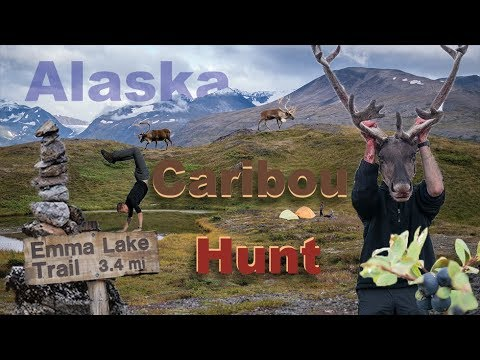 Alaska Caribou Hunting Adventure