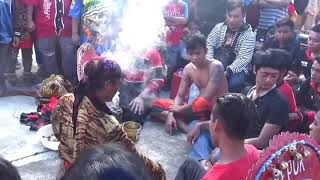 Video SAMBOYO PUTRO - Grandong Kesurupan Angker RUGI GAK NONTON ! download MP3, 3GP, MP4, WEBM, AVI, FLV November 2018
