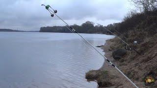 Ловля налима в конце апреля продолжается, рыбалка на донки, насадка тюлька и копаный червь.