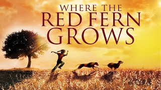 Where the Red Fern Grows - Full Movie