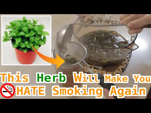 Quit Smoking in 3 Days With Chinese Herbal Remedy | Reduce Nicotine Withdrawal and Cravings FAST戒煙療法