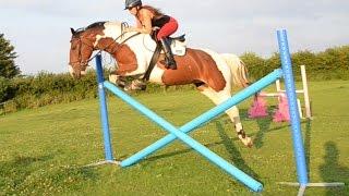 Molly jumping a cross pole MASSIVE!