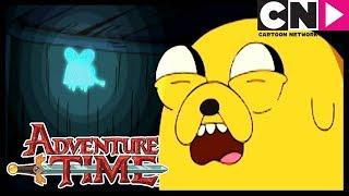 Время приключений Муха Призрак Cartoon Network