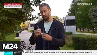 """""""Утро"""": теплая погода ожидается в столичном регионе 3 сентября - Москва 24"""