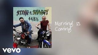 Sting, Shaggy - Webisode #2