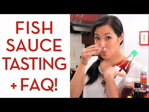 FISH SAUCE: Tasting & Everything You Need to Know - Hot Thai Kitchen!