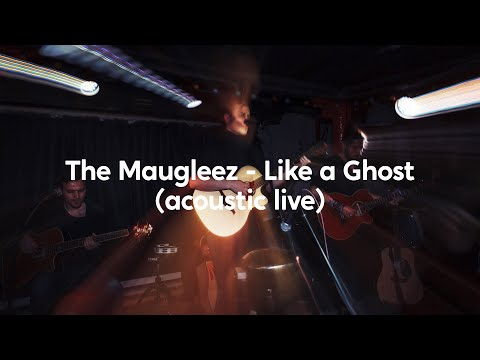 The Maugleez - Like A Ghost (Mr. Pickles OST Cover Live)