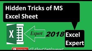 Hidden Tricks of MS Excel Sheet | MS Office 2003/2007/2010/2013/2016