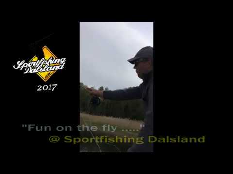"""Fun on the fly"" at Sportfishing Dalsland"
