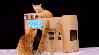 Como Hacer Una Casa Para Gatos Muy Fácil