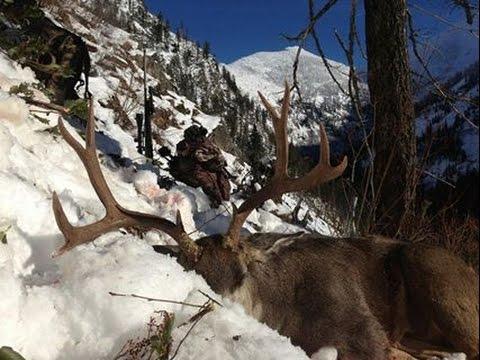 """High Country Mule Deer Hunt """"MUST SEE!!!!!"""" - Stuck N the Rut 43"""