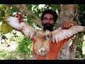 Tandoori Duck in Village Style Prepared by my friends | village food taste