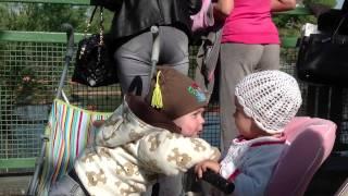 Зоопарк 4 HD Детские Страсти