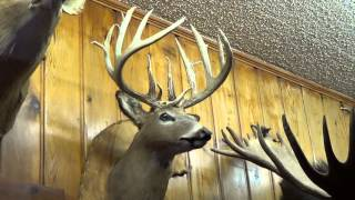 deer hunting 2013 part 16 of 20 Pats Boone and Crockett 2