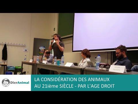 La considération des animaux au 21ième siècle – par L'AGE Droit