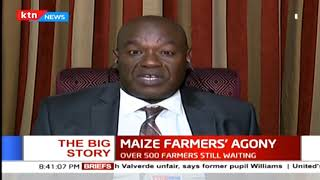 The Big Story: Agony faced by maize farmers