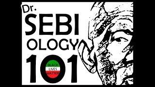 DR  SEBIology 101 videos, DR  SEBIology 101 clips