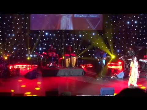 Kumar Sanu & Alka Yagnik LIVE In London 2014 - Part 13 Of 23 - Raah Mein Unse Mulaqat - VIJAYPATH