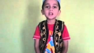Omair Ahmad singing Bibi Amina ke phool