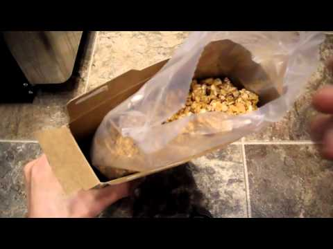 Review Kashi Go Lean Crunch 9grams Of Protein Non GMO Cereal