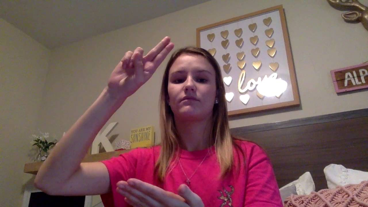 asl 101 Sign language 101 back in graduate school, i became really interested in the idea of teaching hearing babies sign language in fact, i was so interested that i did a huge research paper on the topic.