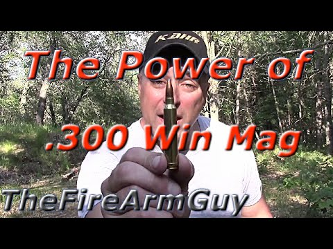 The Power of .300 Win Mag - TheFireArmGuy