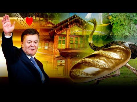 Где сейчас живет Янукович и тоскует ли он по страусах, унитазах и батону - Гражданская оборона