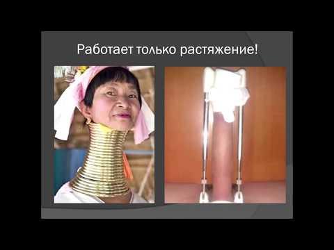 Как удлинить член теберда