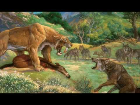Dire wolf vs Saber Tooth Tiger