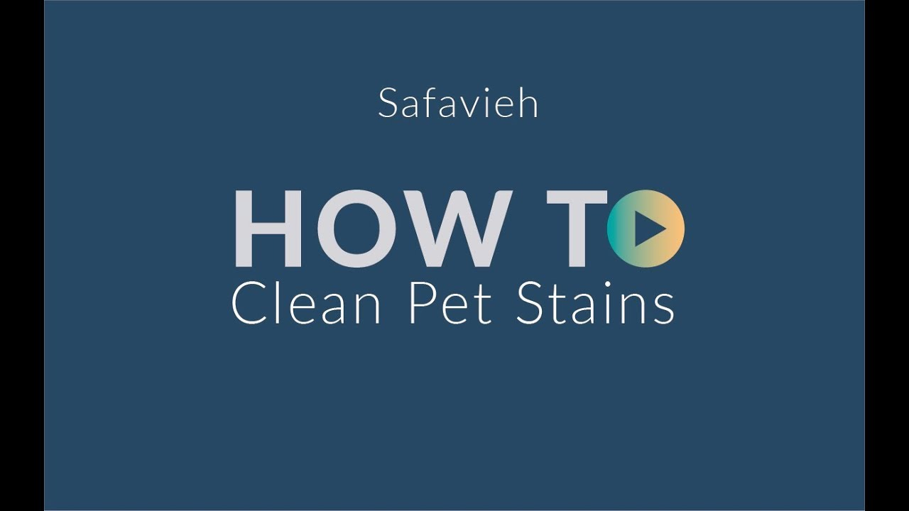 Remove Pet Stains From Carpets   Safavieh.com