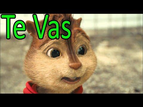 Ardillas - Te Vas (OZUNA) | Letra + Descarga